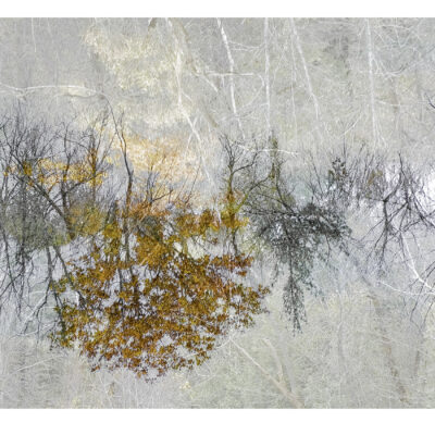 """Lost in a Dream Photography 18""""x40"""""""