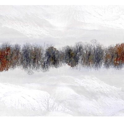 """The Great Divide Photography 18""""x40"""""""