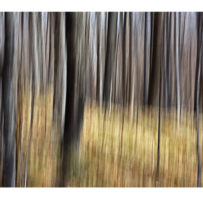 """Side by Side Photography 18""""x24"""""""