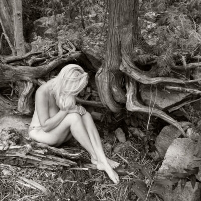 "Roots II Photography 18""x24"""